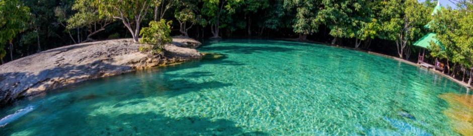 Tour en la selva de krabi y piscina esmeralda viajes y for Piscina la selva